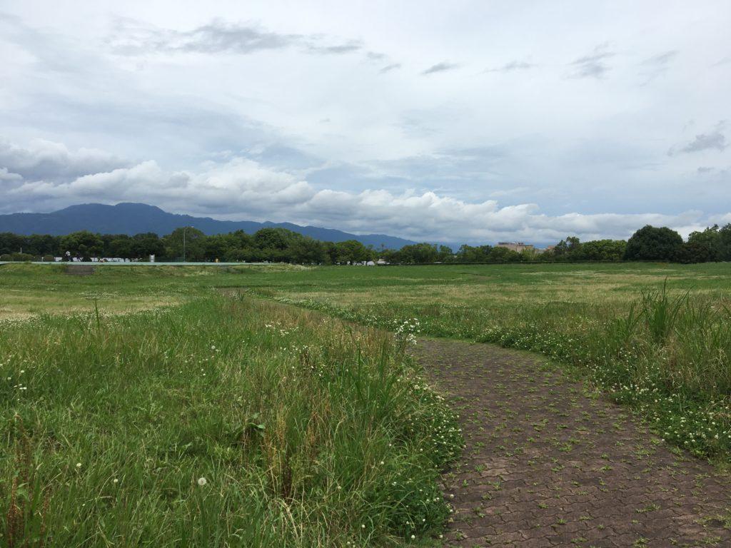 矢橋帰帆島公園の大原っぱ写真