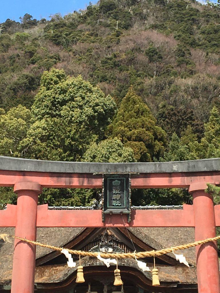 白鬚神社の鳥居画像